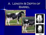 a length depth of barrel