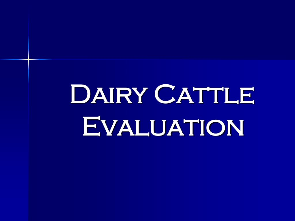 dairy cattle evaluation l.