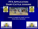 ffa application dairy cattle judging