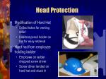 head protection39