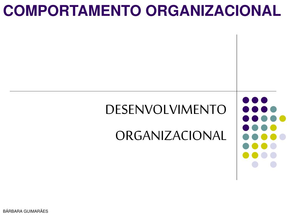 desenvolvimento organizacional l.