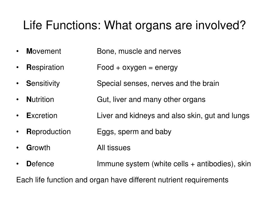 Life Functions: What organs are involved?