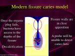 modern fissure caries model34