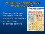 as metas da miss o e do projeto qvjcvv