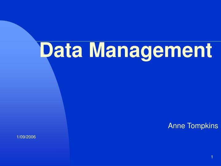 data management n.