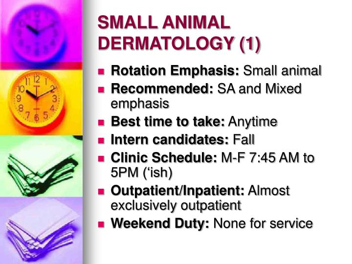 Small animal dermatology 1