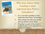 why does junior think roundup is more important than perfect attendance