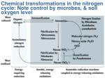 chemical transformations in the nitrogen cycle note control by microbes soil oxygen level