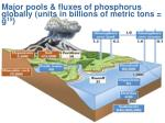 major pools fluxes of phosphorus globally units in billions of metric tons g 15