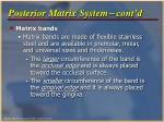 posterior matrix system cont d
