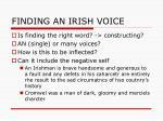 finding an irish voice