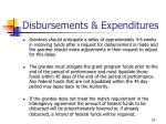 disbursements expenditures