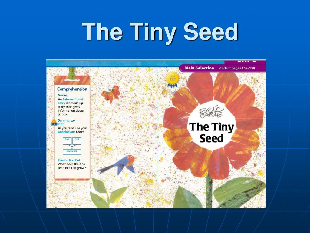 the tiny seed l.