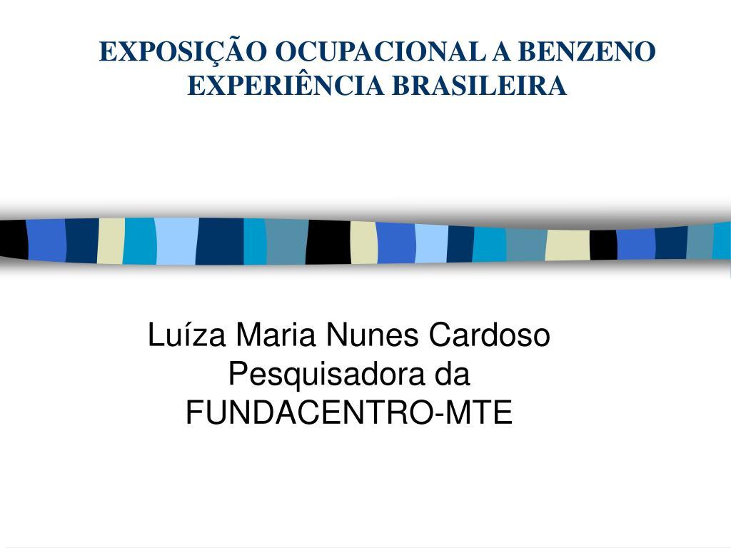 exposi o ocupacional a benzeno experi ncia brasileira l.