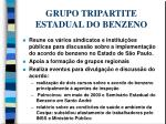 grupo tripartite estadual do benzeno