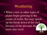 weathering19