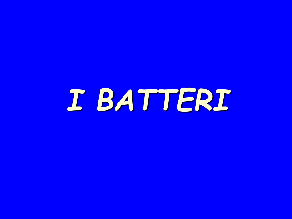 i batteri l.