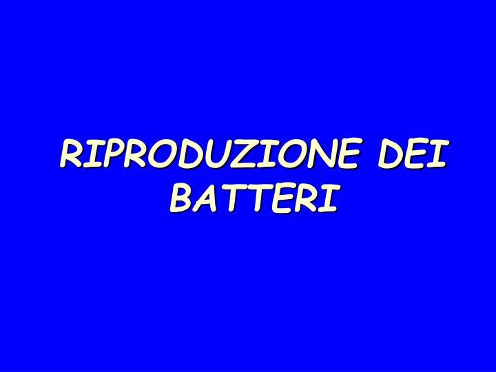 Ppt i batteri powerpoint presentation id 227839 for Riproduzioni design