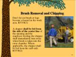 brush removal and chipping