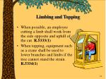 limbing and topping