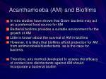 acanthamoeba am and biofilms