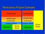 reinsurance program examples