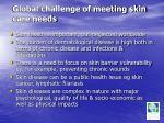 global challenge of meeting skin care needs