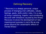 defining recovery4
