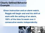 clearly defined behavior example105