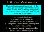 a the control environment