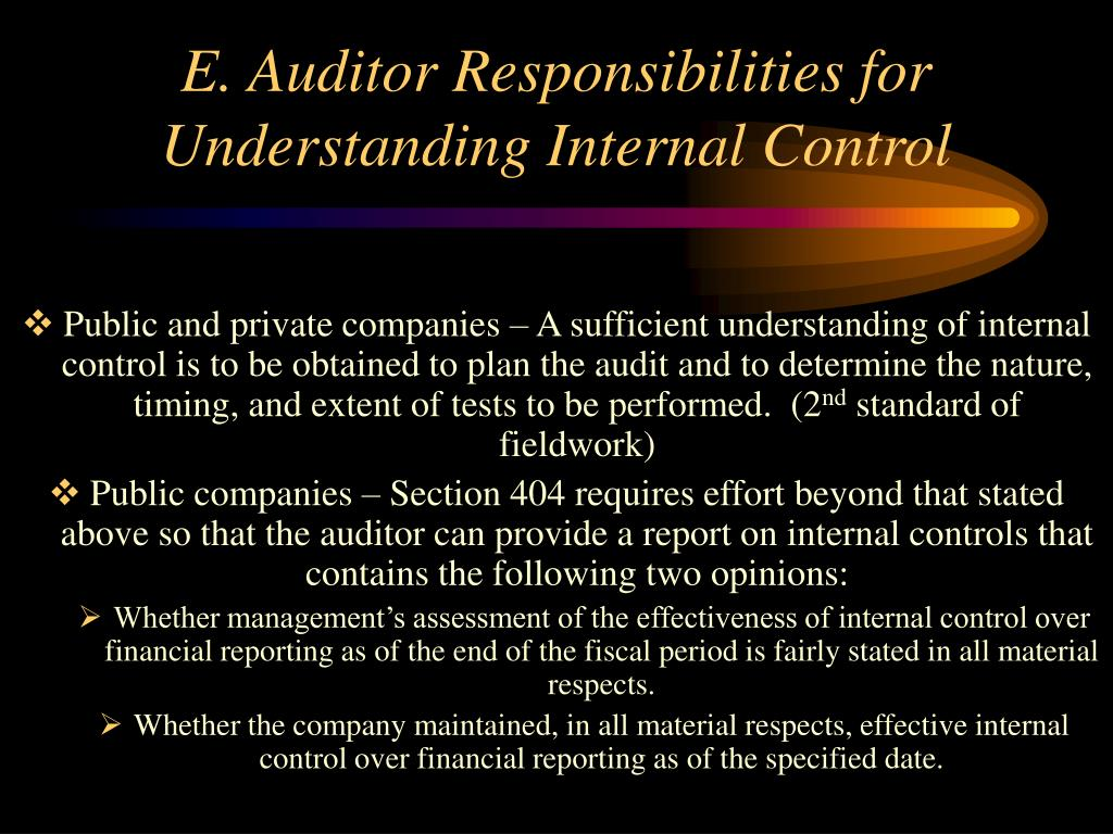 E. Auditor Responsibilities for Understanding Internal Control