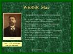 weber max9