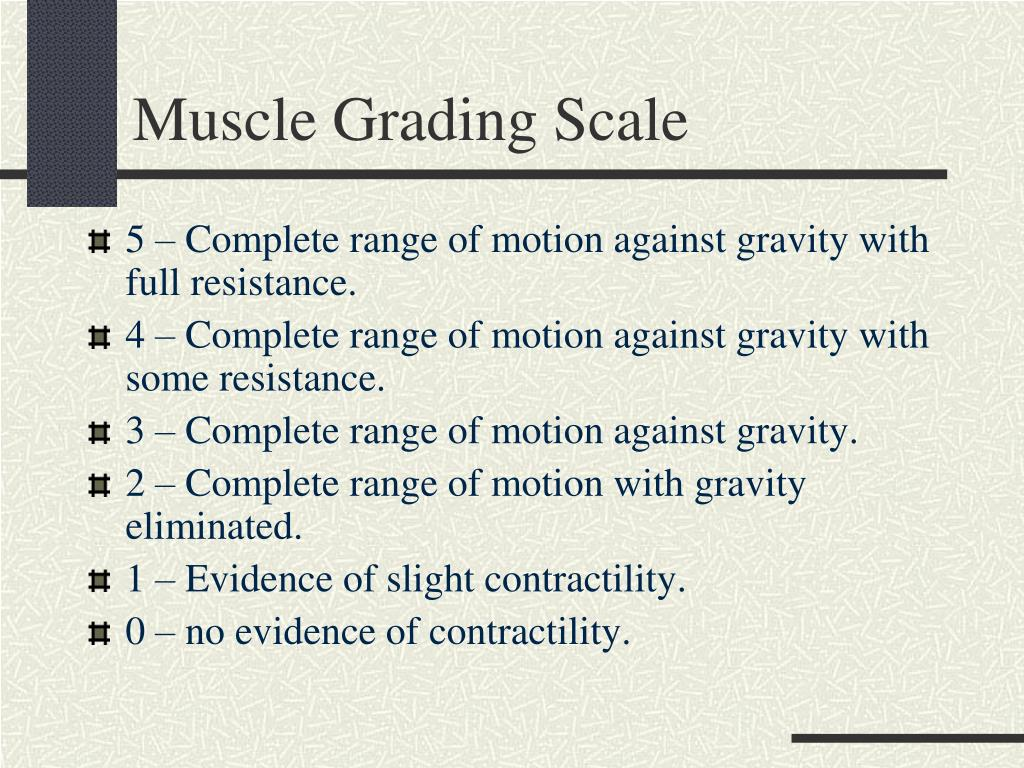 Muscle Grading Scale