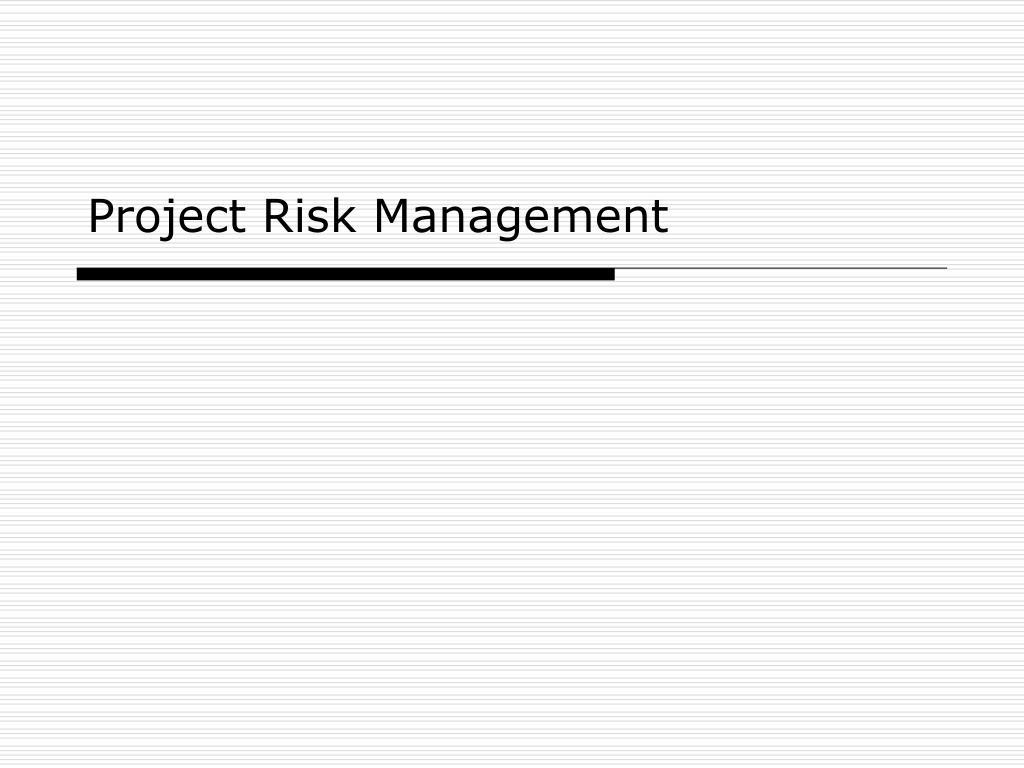 project risk management l.