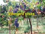 vineyard visits