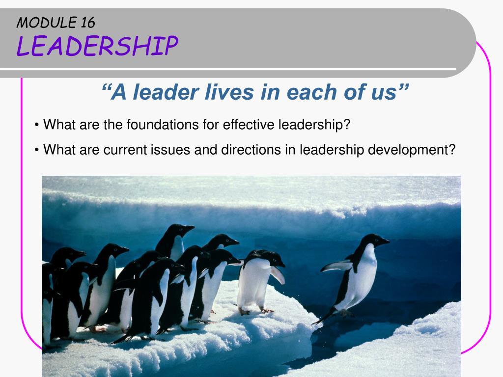 module 16 leadership l.