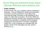 every thing you wanted to know about german wine but were afraid to ask