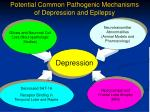 potential common pathogenic mechanisms of depression and epilepsy