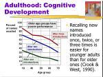 adulthood cognitive development
