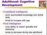 adulthood cognitive development4
