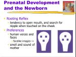 prenatal development and the newborn5