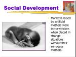 social development3