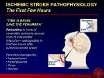 ischemic stroke pathophysiology the first few hours