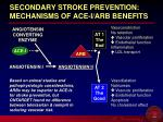 secondary stroke prevention mechanisms of ace i arb benefits
