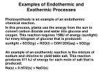 examples of endothermic and exothermic processes