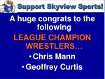 support skyview sports