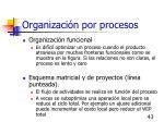 organizaci n por procesos