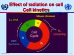 effect of r adiation on c ell cell k inetics