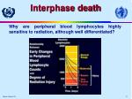 interphase death