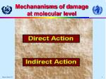 mechananisms of d amage at molecular level